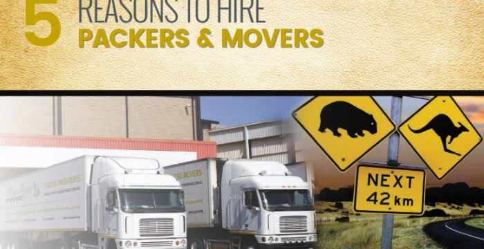 5 Reasons To Hire Packers and Movers!